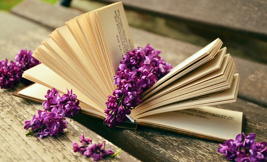 Book Photograph - Book And Flower by Carlene Smith