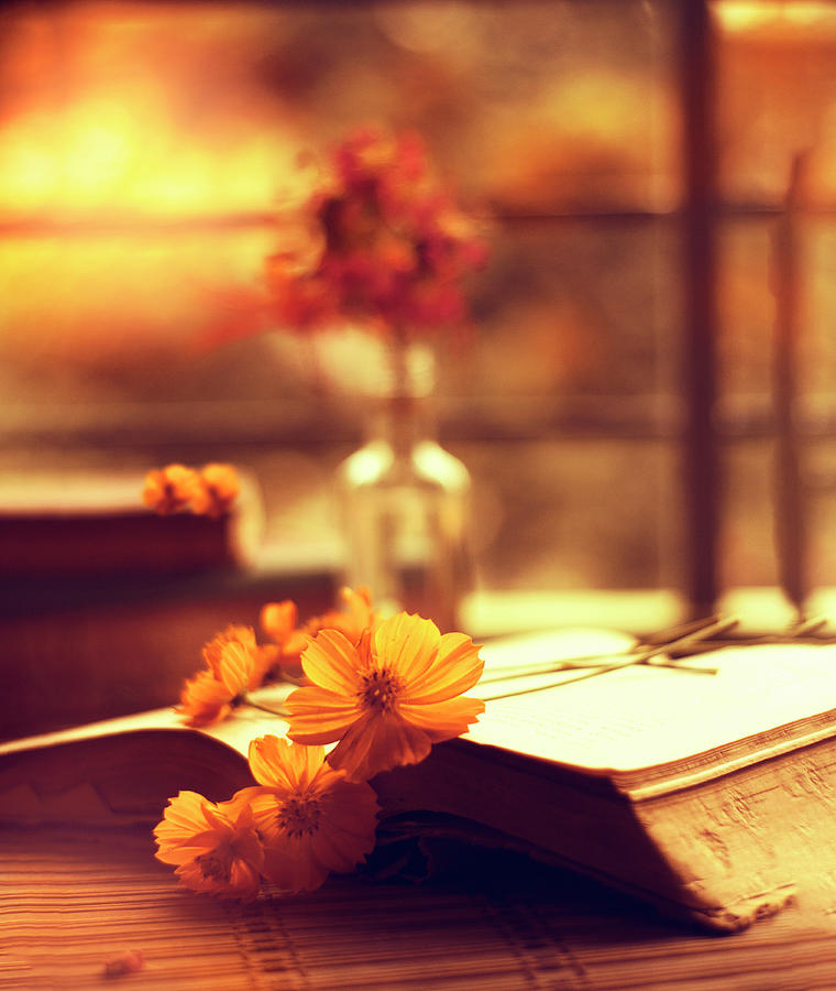 Books Photograph - Books And Flowers by Ashique Ridwan