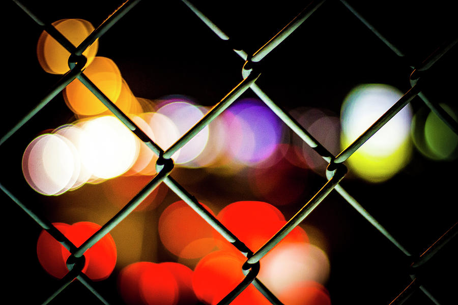 Boomers Beyond the Fence Photograph by Kyle Field