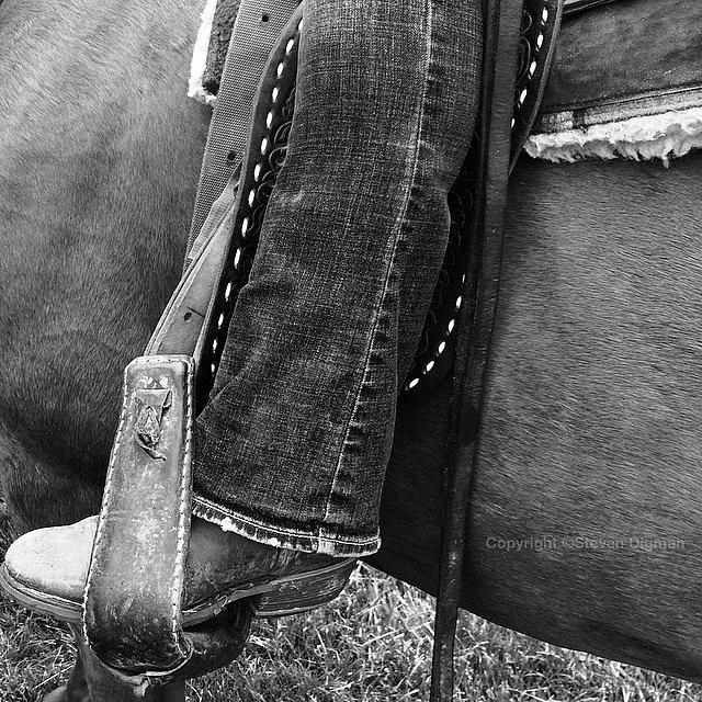 Horses Photograph - Boot Stubble   by Steven Digman