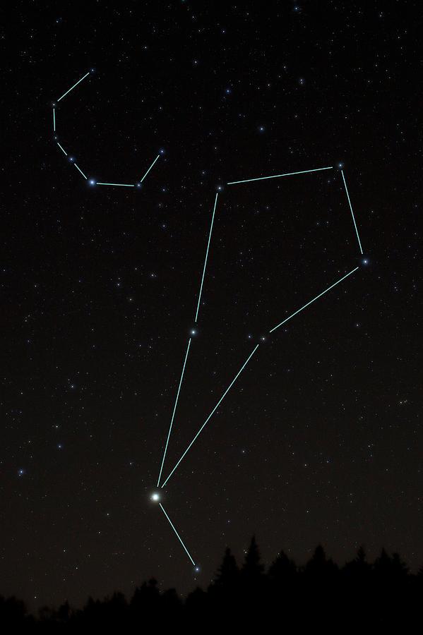 Bootes And Corona Borealis Constellations Photograph By Larry Landolfi