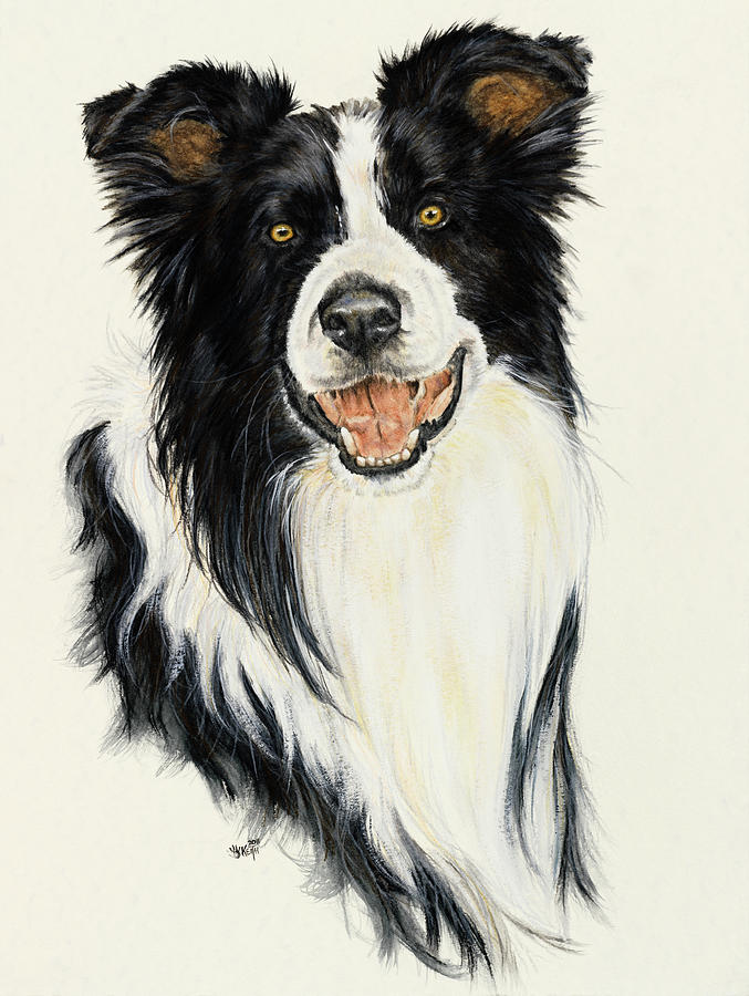 Border Collie White Horse Painting