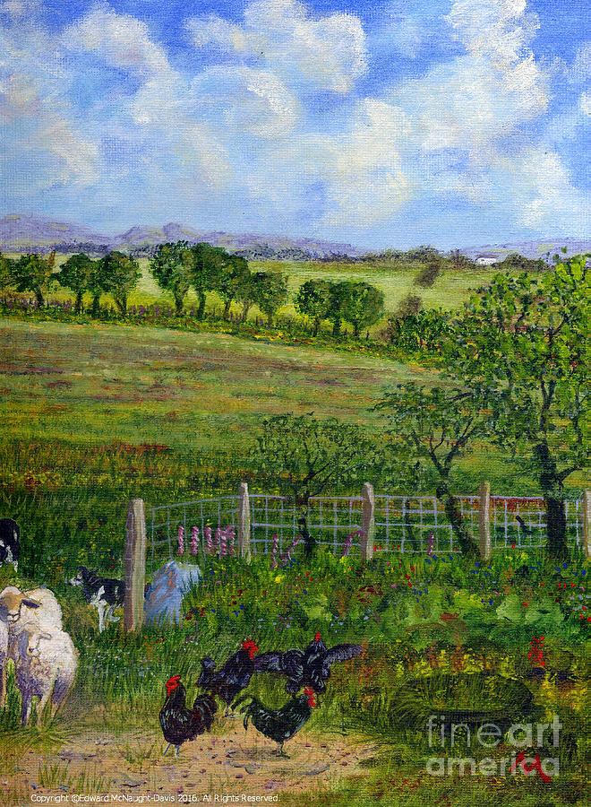 Border Collie Dogs Driving Sheep Passed Black Cockerels by Edward McNaught-Davis