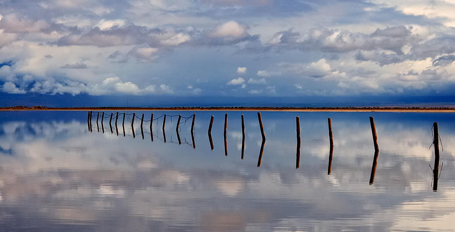 Reflections Photograph - Borderline - Reflections Of Earth by Steven Milner