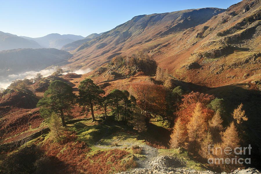 Borrowdale Photograph - Borrowdale From Castle Crag by Bryan Attewell