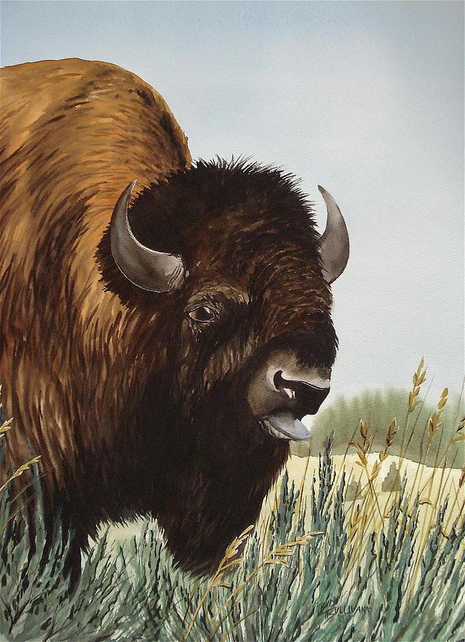 Buffalo Painting - Boss Bull by Bud Bullivant