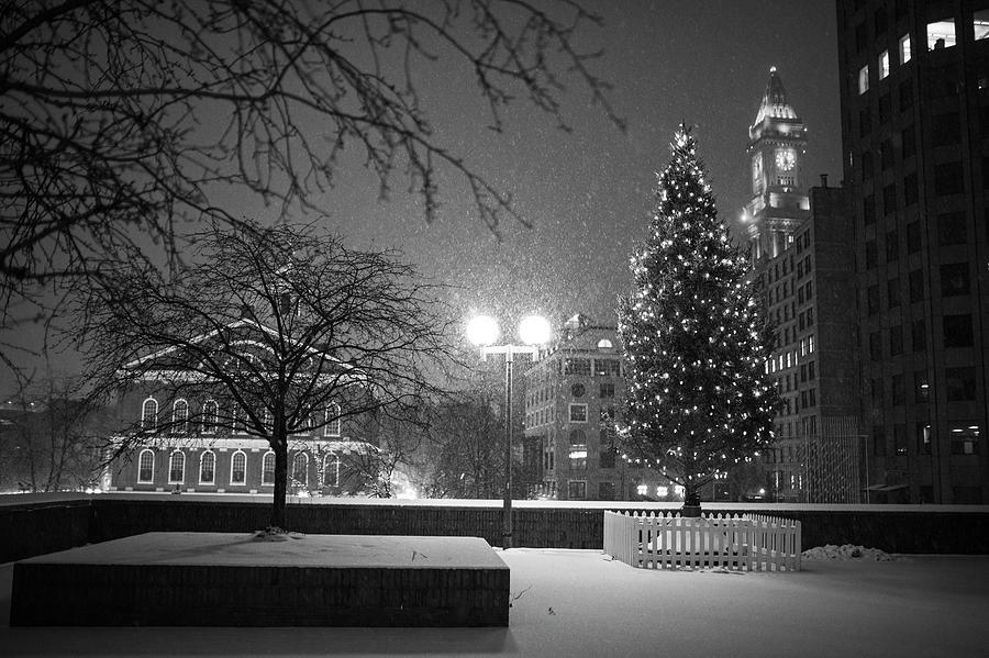 Christmas In Boston Massachusetts.Boston City Hall Christmas Tree Snow Storm Boston Ma Black And White