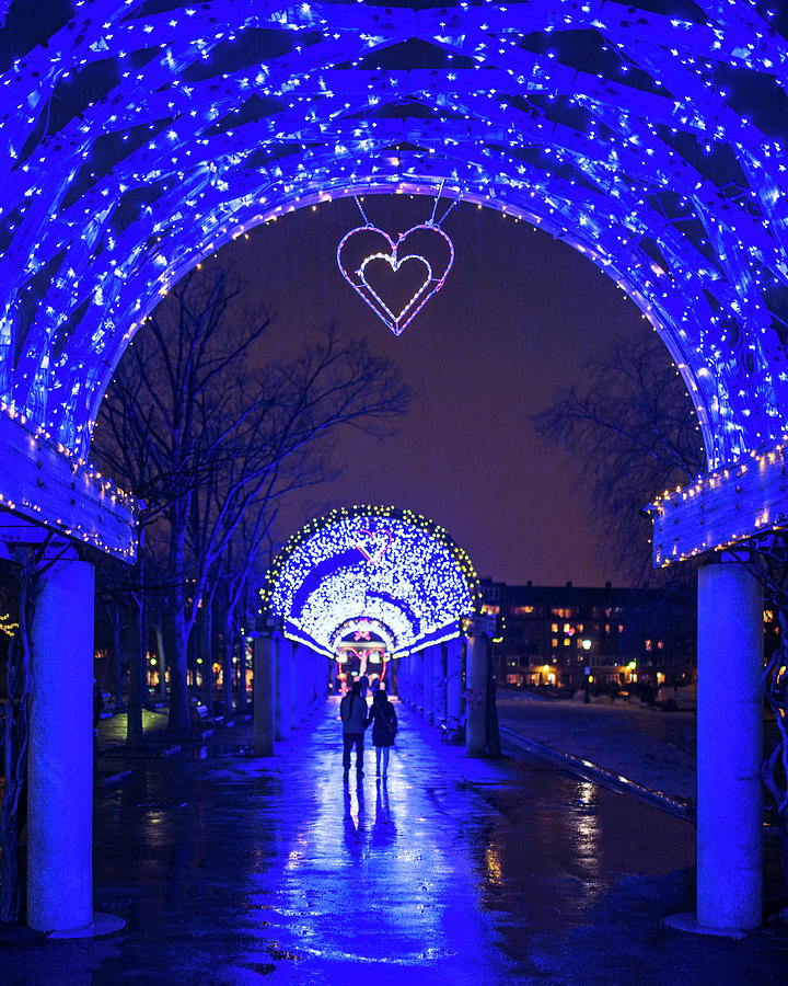 Boston photograph boston ma christopher columbus park trellis lit up for valentines day rainy night