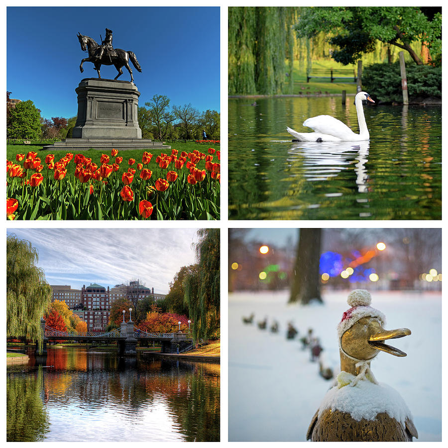 Boston Public Garden Four Seasons Boston MA by Toby McGuire