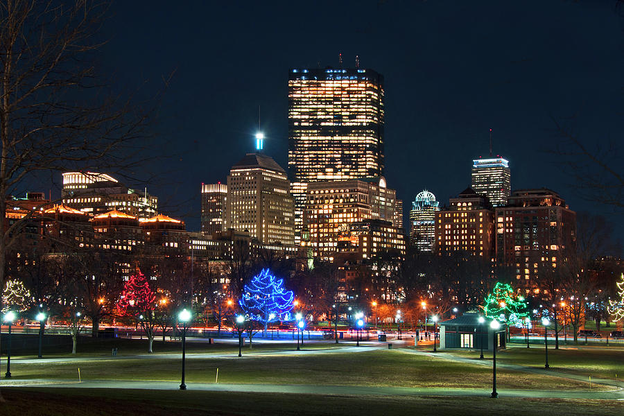 Boston Skyline from Boston Common by Joann Vitali