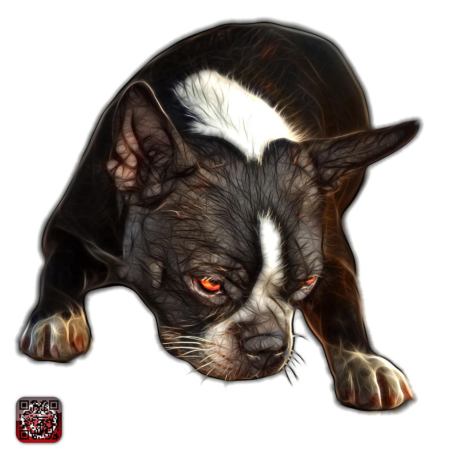 Boston Terrier Art - 8384 - WB by James Ahn