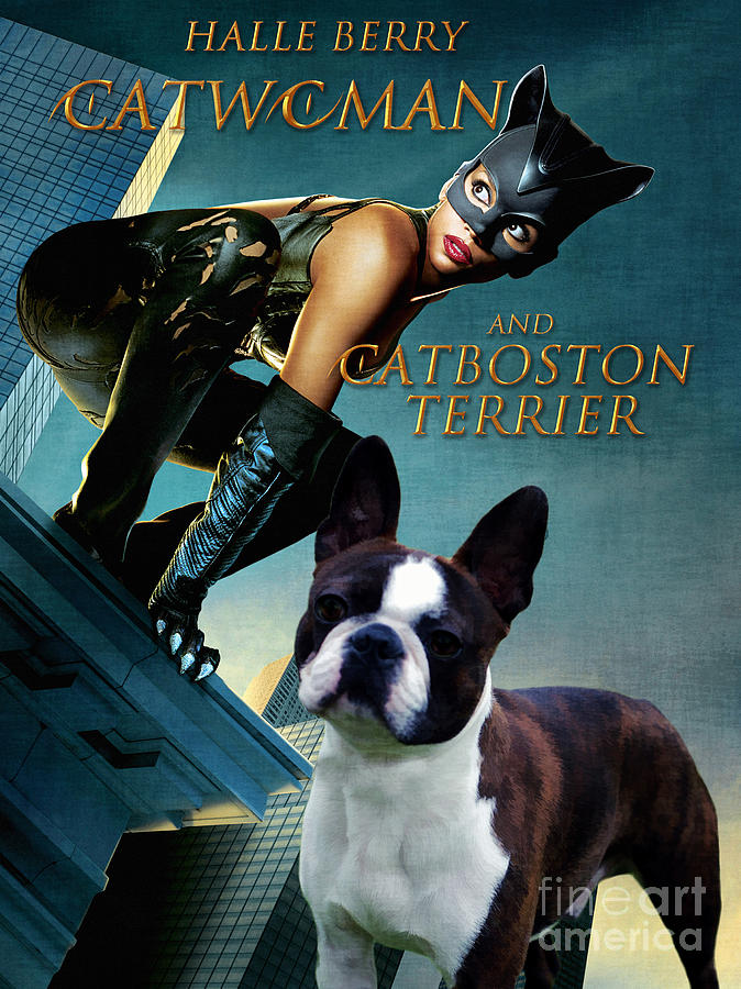 Boston Terrier Art Canvas Print Catwoman Movie Poster