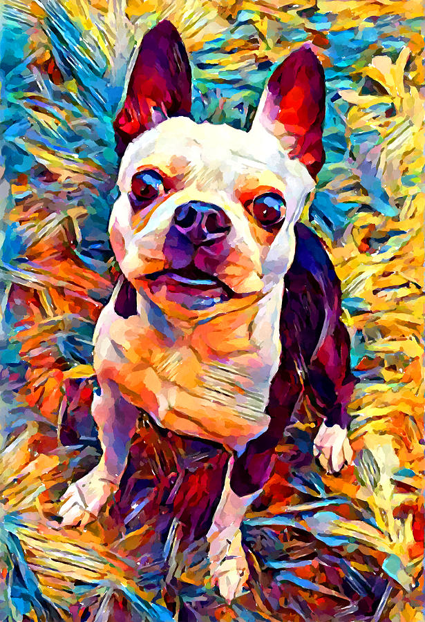 Dog Painting - Boston Terrier by Chris Butler