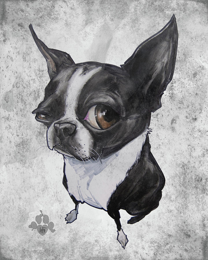 Boston Terrier Drawing - Boston Terrier - Grey Antique by Canine Caricatures Custom Merchandise