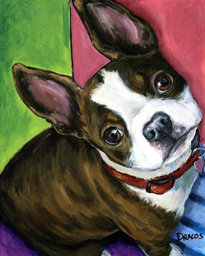 Boston Terrier Painting - Boston Terrier Looking Up by Dottie Dracos