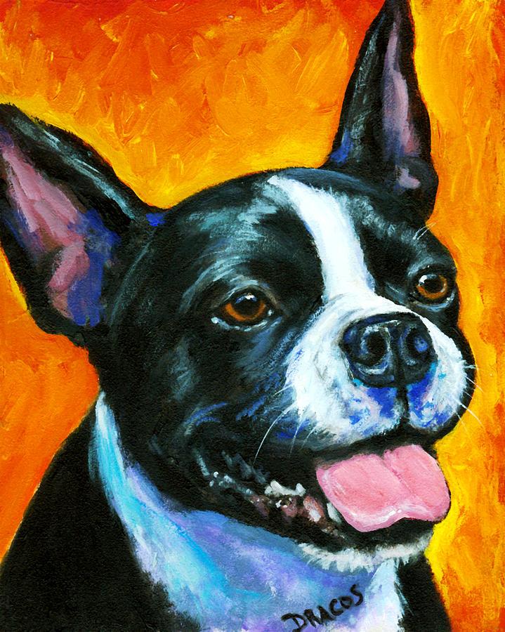 Boston Terrier Painting - Boston Terrier On Orange by Dottie Dracos