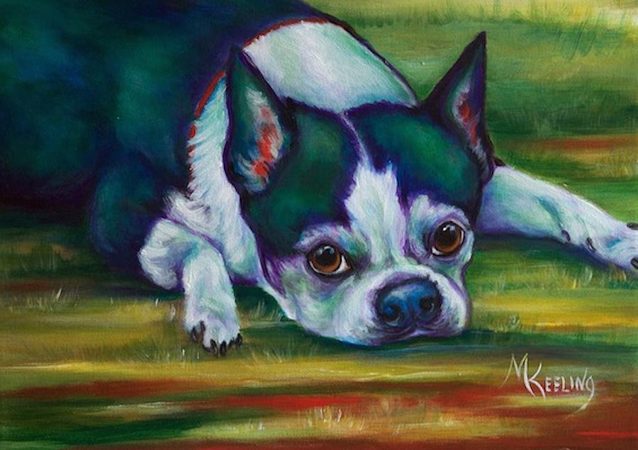 Boston Terrier1 by Meg Keeling