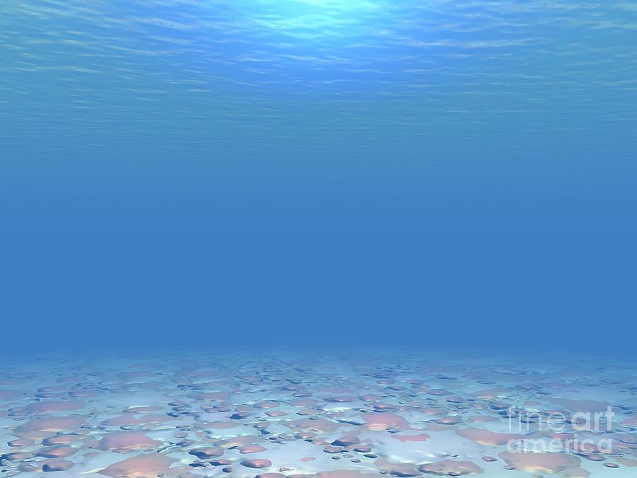 Sea Digital Art - Bottom Of The Sea by Phil Perkins