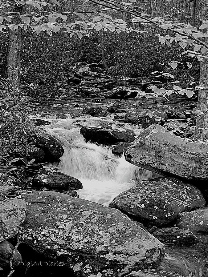 Rocks Digital Art - Boulder Creek by DigiArt Diaries by Vicky B Fuller