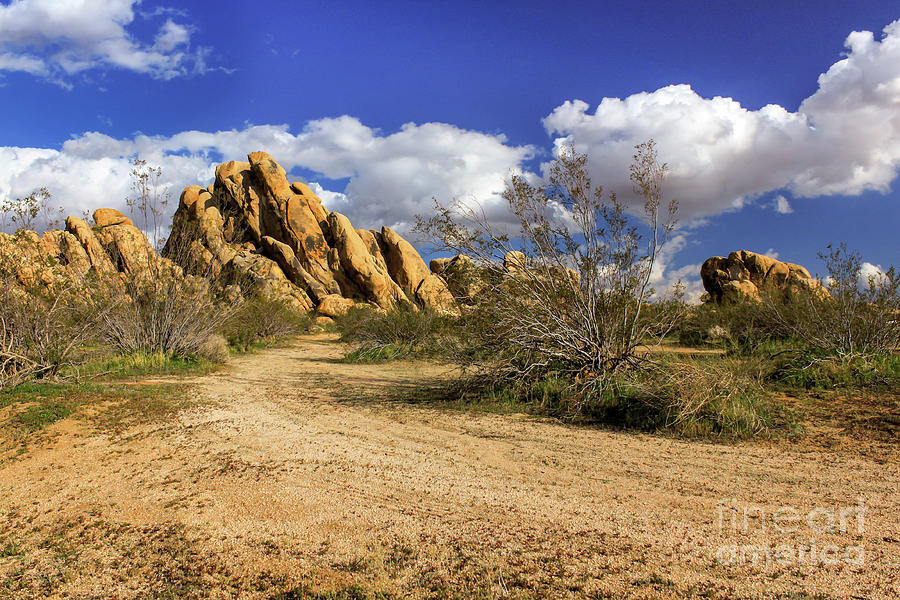 Landscape Photograph - Boulders At Apple Valley by James Eddy