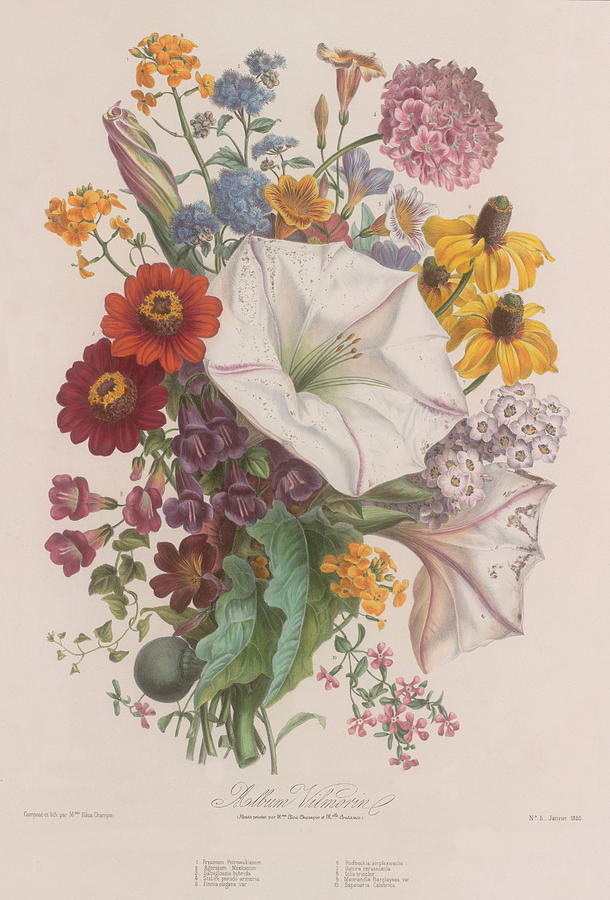 bouquet of flowers art wall bouquet of flowers home decor vintage