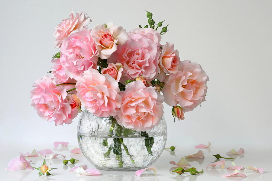 Bouquet Of Pink Roses In A Vase Romantic Floral Still Life