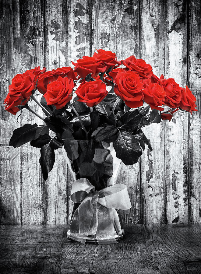 Roses Photograph - Bouquet of Roses by Wim Lanclus