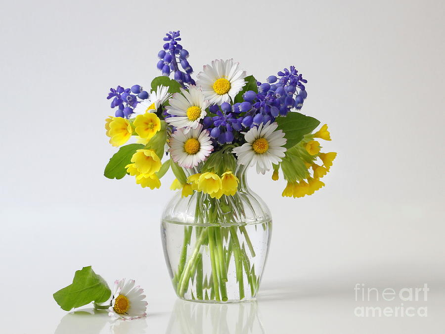 Bouquet Of Spring Colorful Flowers In A Vase Romantic Floral Still Life Photograph By Ivora Obrazy
