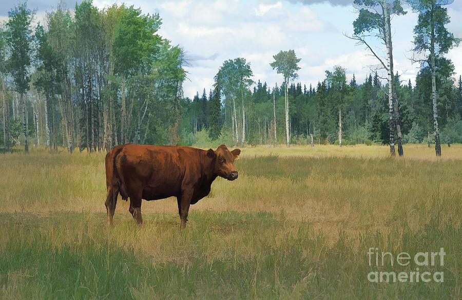 Animal Lovers Painting - Bovine Bliss by Skye Ryan-Evans
