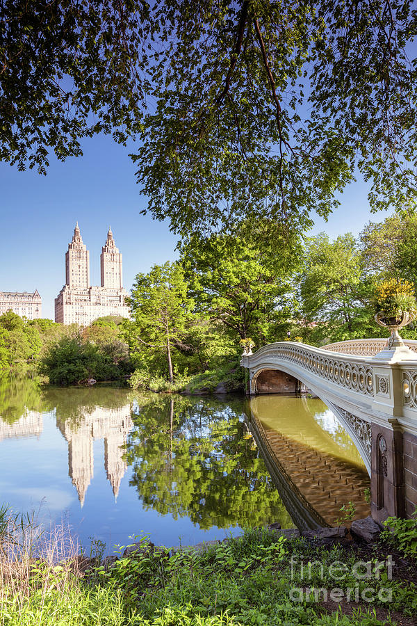 Central Park Photograph - Bow Bridge In Spring, Central Park, Manhattan, New York, Usa by Matteo Colombo