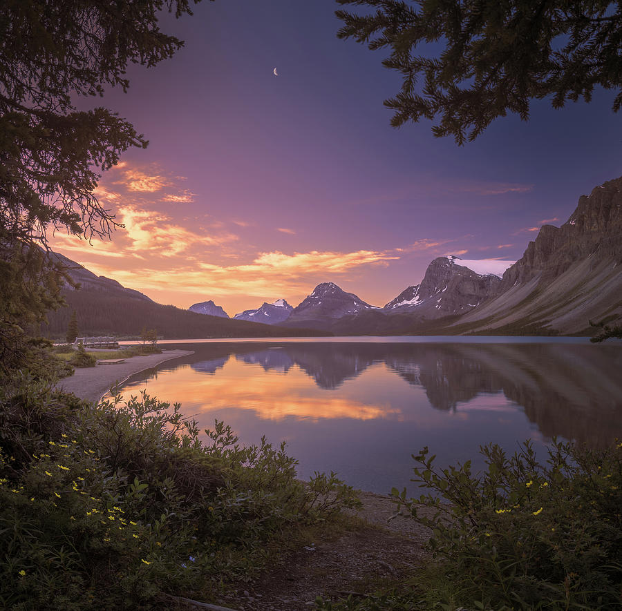 America Photograph - Bow Lake At Dawn by William Freebilly photography