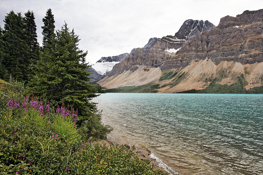 Alberta Photograph - Bow Lake Scenic With The Crawfoot Glacier by George Oze