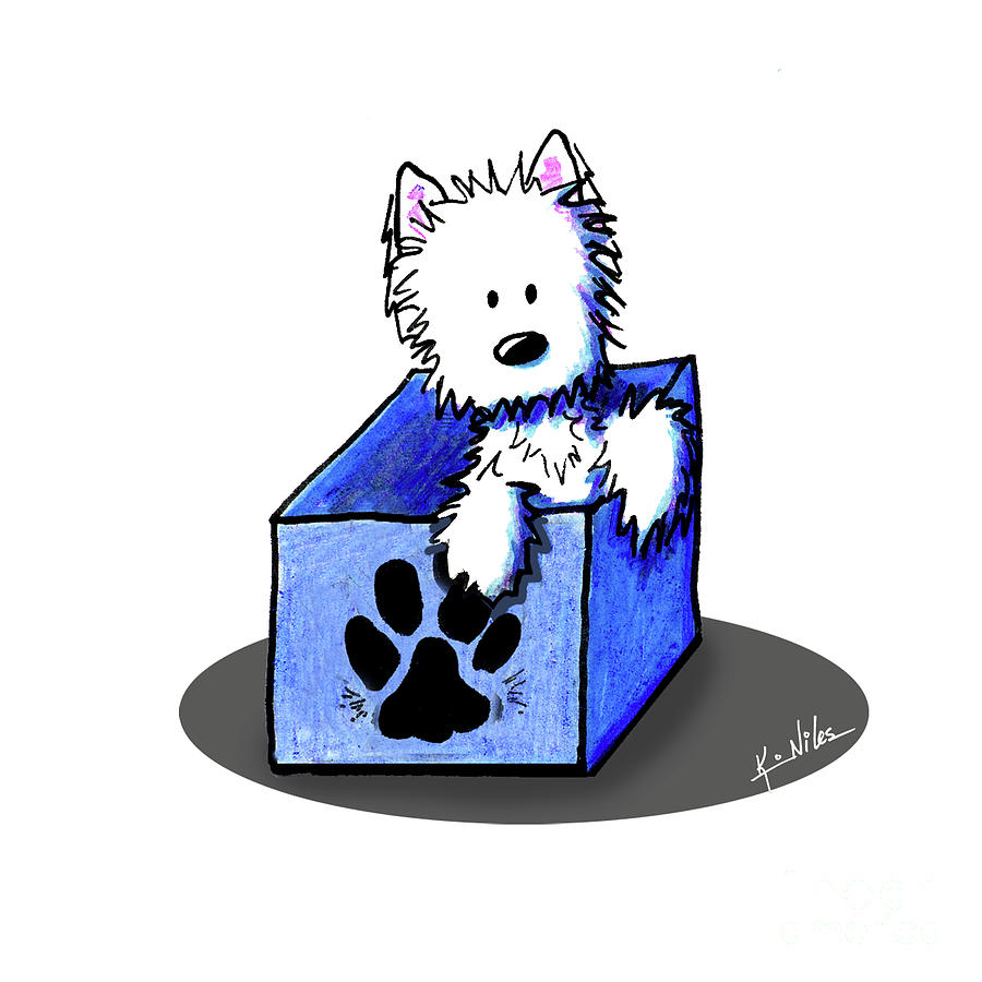 Westie Drawing - Boxed In Cuteness by Kim Niles