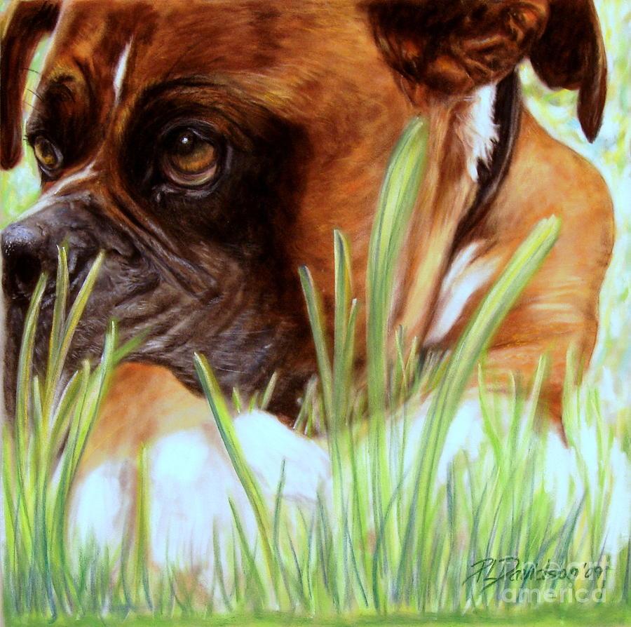 Boxer Pastel - Boxer  by Patricia L Davidson