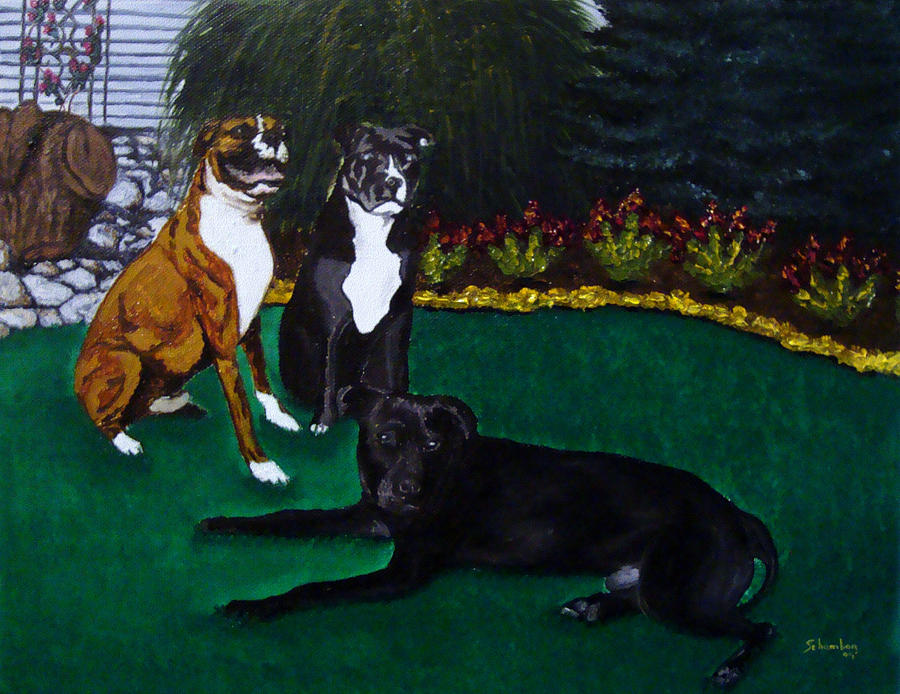 Boxer Painting - Boxer Pitbull Mix by Amanda Schambon