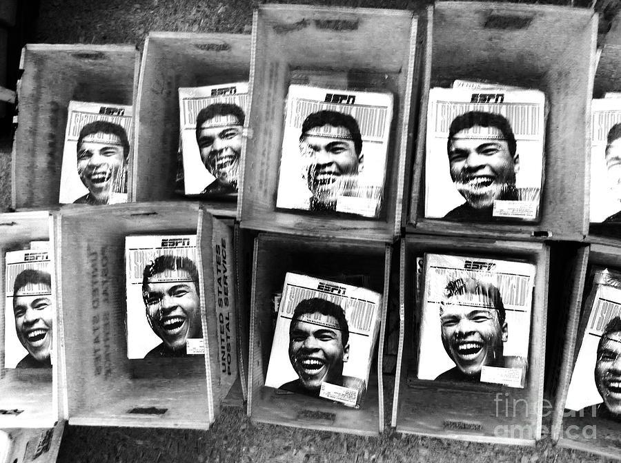 Boxer Photograph - Boxers Boxes by WaLdEmAr BoRrErO