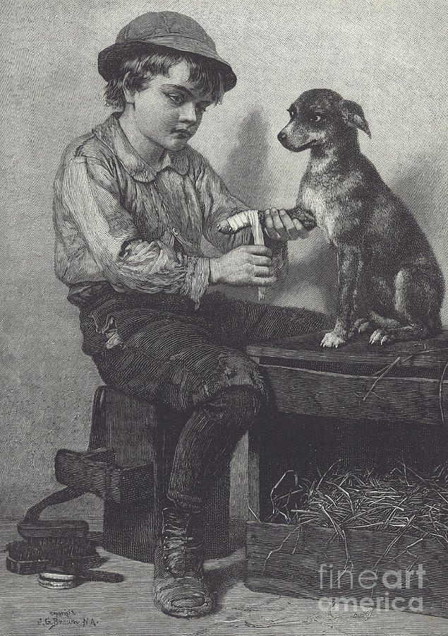 Boy Drawing - Boy Mends Dogs Leg by British School