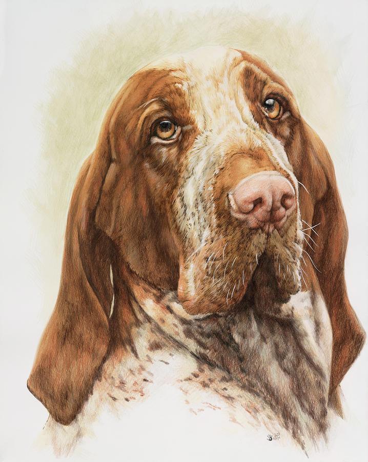 Dog Painting - Bracco Italiano by Barbara Keith