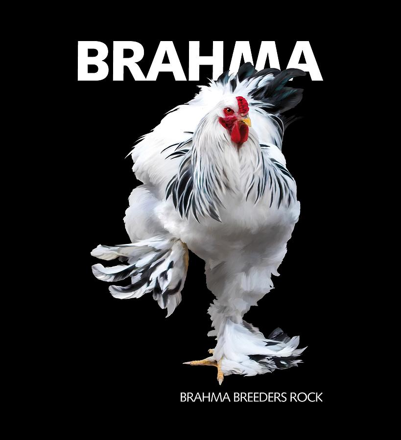 Brahma Digital Art - Brahma Breeders Rock T-shirt Print by Sigrid Van Dort
