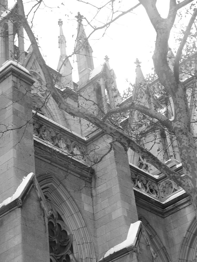 Church Photograph - Branches Of Prayer by Kate Collins