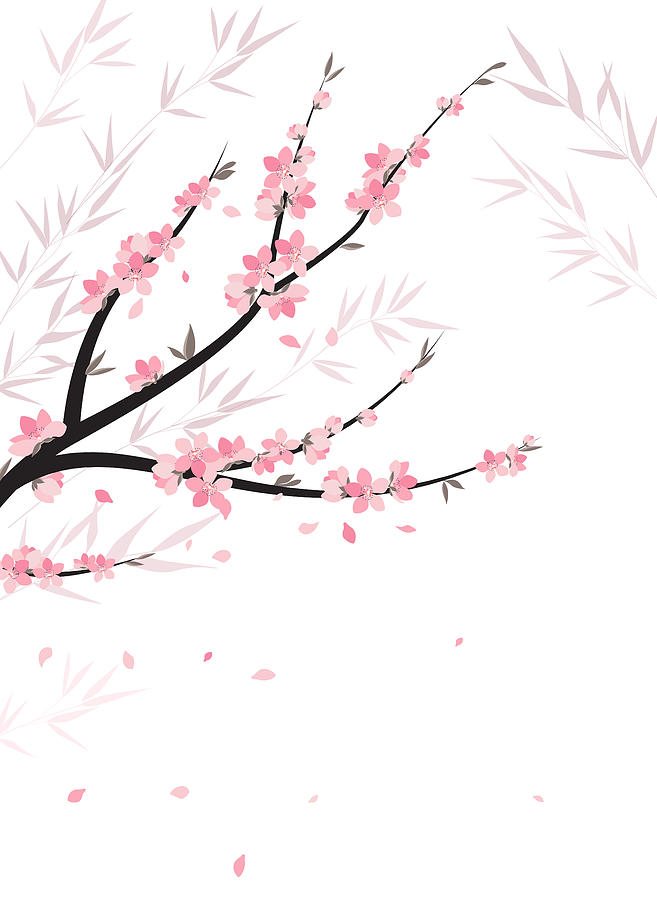 Vector Drawing - Branches With Flowers by Miroslava Hlavacova