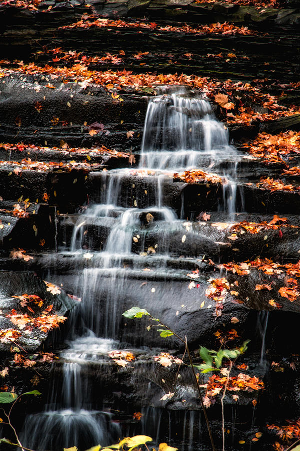 Brandywine Photograph - Brandywine Falls In Autumn by Tom Mc Nemar