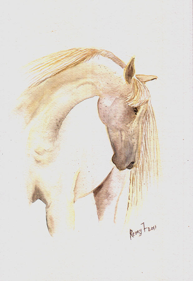 Horse Artwork Painting - White Horse From The Wild by Remy Francis