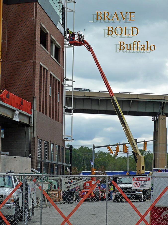 Construction Photograph - Brave Bold Buffalo by JoAnne McNamara