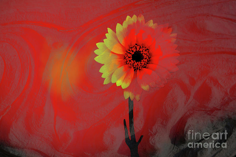 Flower Photograph - Brave New World by Ronald Hoggard