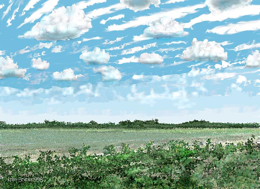 Texas Digital Art - Brazoria County Field by Kerry Beverly