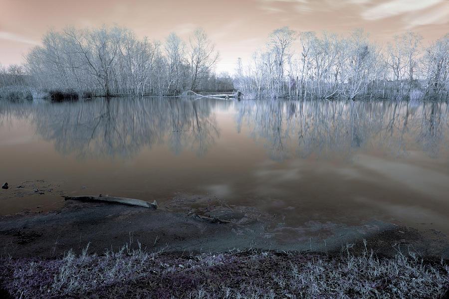 Surreal Photograph - Brazos Bend Winter Fantasy by Katrina Lau