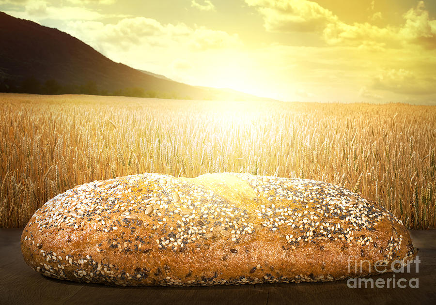 Agriculture Photograph - Bread And Wheat Cereal Crops At Sunset by Deyan Georgiev