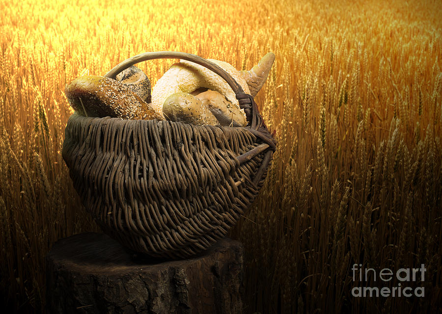Agriculture Photograph - Breads And Wheat Cereal Crops by Deyan Georgiev