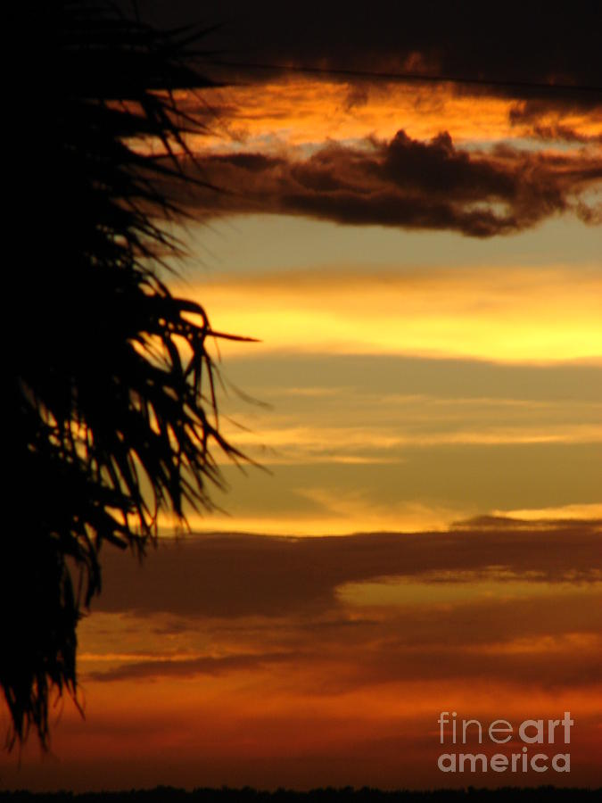 Symbolic Photograph - Breaking Dawn by Priscilla Richardson